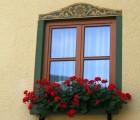 window-1044118_1280